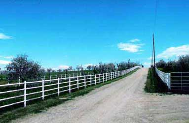 Pipe, pipe panel, fiberglass, or vinyl fences