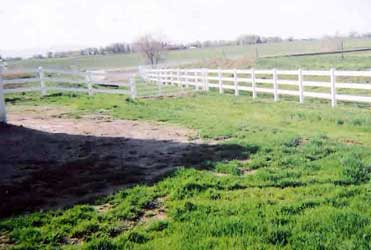 Pastures with no wire fencing anywhere