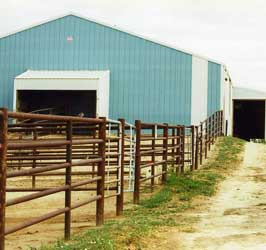 Large pipe pens with shelters